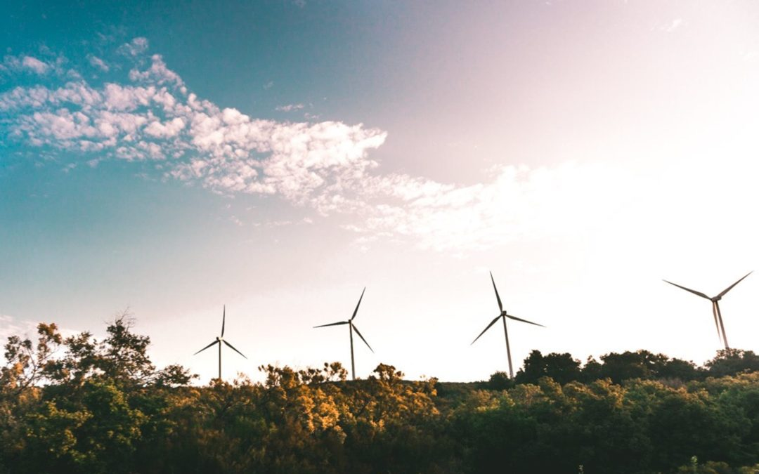 How did wind power just become America's biggest renewable energy?